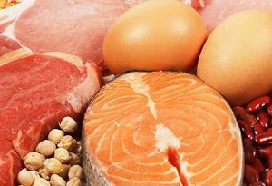 Растительный и животный белок для похудения