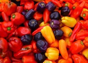 Болгарский перец состав и свойства